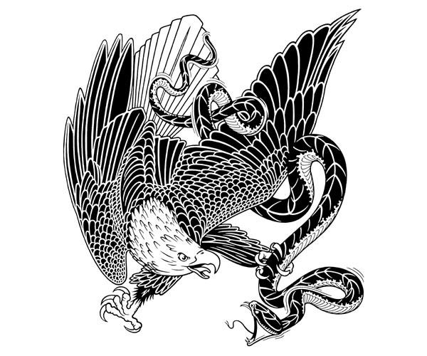 eagle_vs_snake.jpg