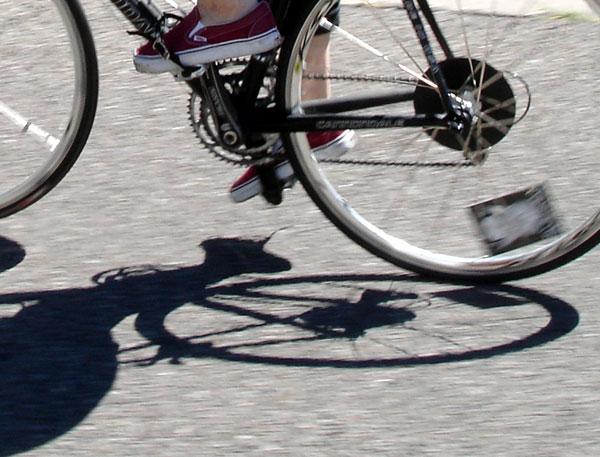 speedy_rides.jpg