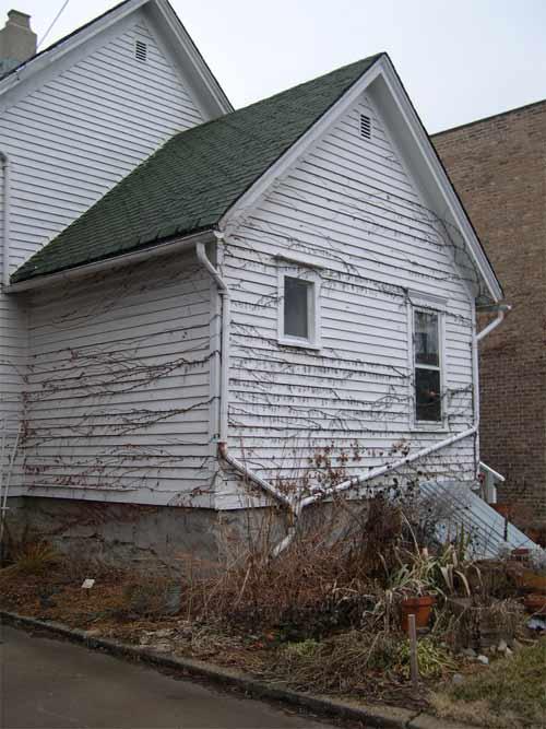 sswhitehouse.jpg