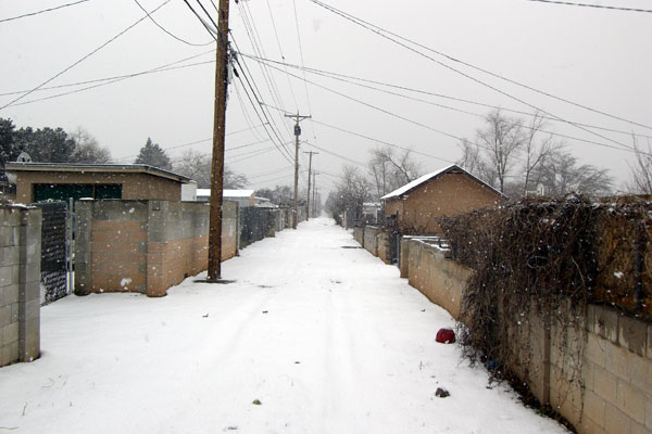 snowy_belair.jpg