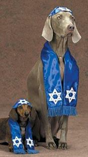 jewish%20dogs.jpg
