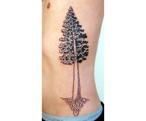 kell_tree.jpg