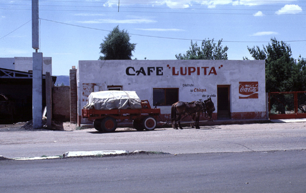 cafelupita.jpg