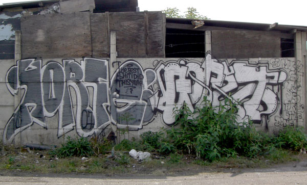 horfe_gorey.jpg