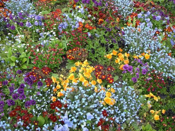 parc_floral.jpg