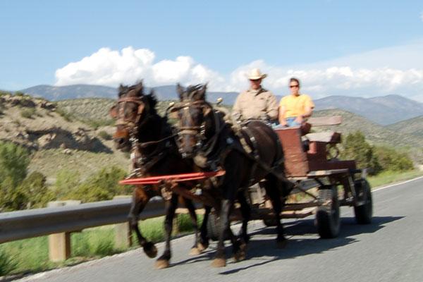 hwy_horses.jpg