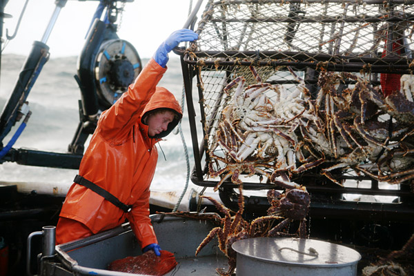 the economics behind alaskan king crab Are you ready to tear into alaskan king crab this are restaurant workhorses and considered the most economic species of crab hacks from tasting table.