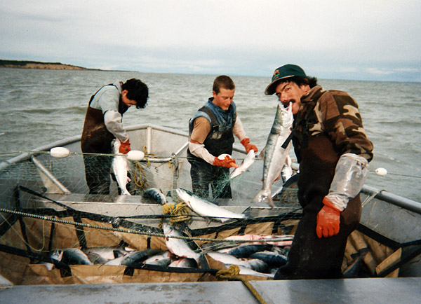 How to be an alaskan fisherman for Fishing jobs near me