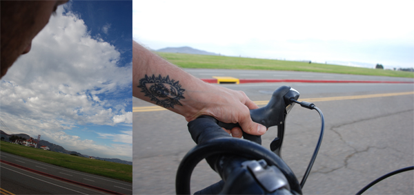bikearmdiptych.jpg