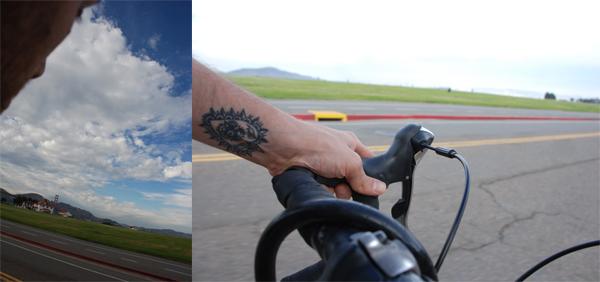bikearmdiptych.jpg
