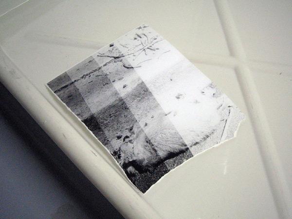 printing-169.jpg