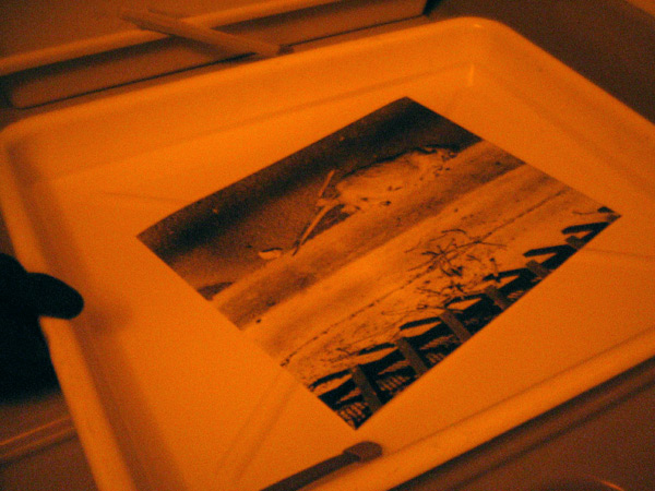 printing-177.jpg