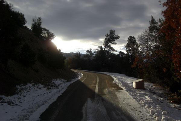 driveway.jpg