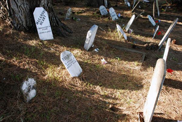 1pet-cemetery.jpg