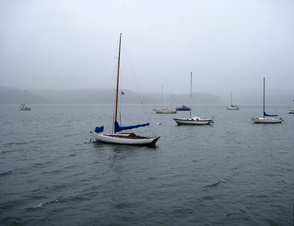 marin-boats.jpg