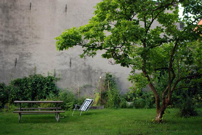 trees-green.jpg