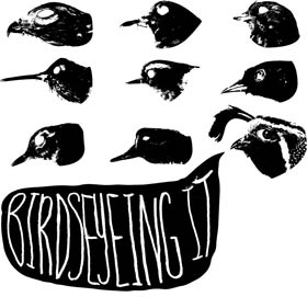 birdseyeingit2.jpg