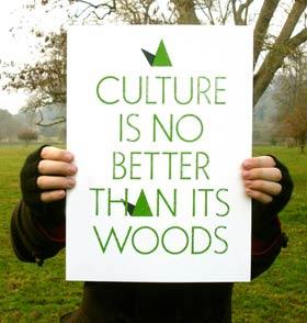 culture-field.jpg