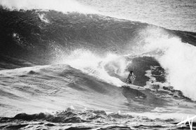 surfy.jpg